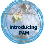 Introducing PAM